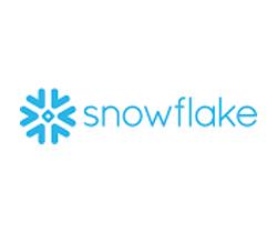best software stocks (SNOW stock)