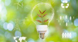 Renewable energy stocks (ENPH stock vs SPWR stock)