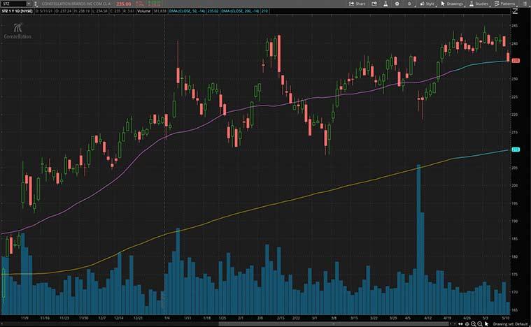 top dividend stocks (STZ stock)