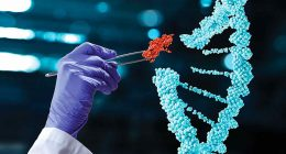 what stocks to invest in 2021 (gene editing stocks)